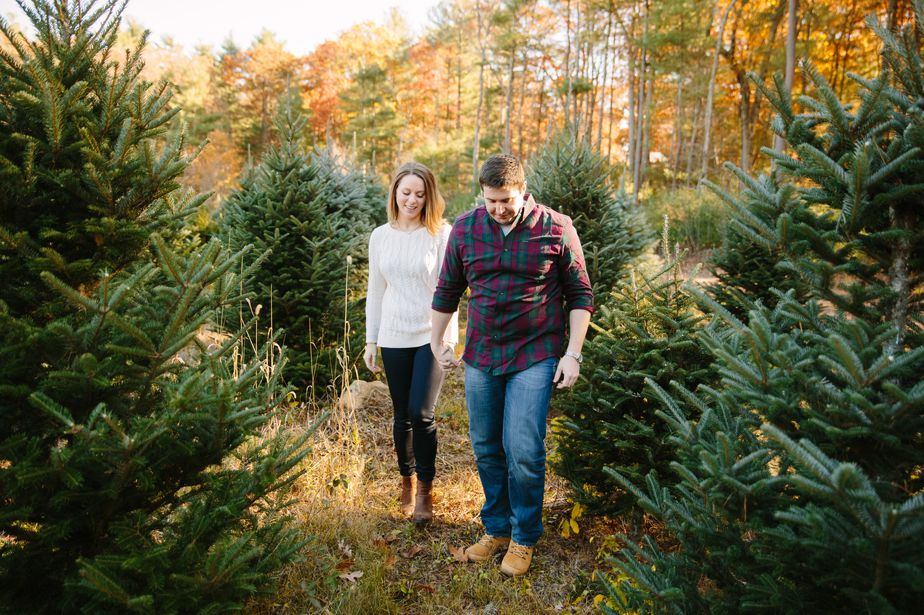 06_tree-farm-engagement-shoot-massachusetts
