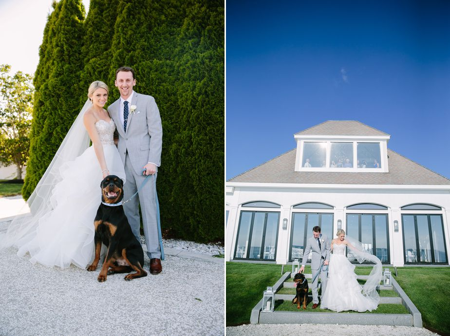 rotweiler dog at belle mer wedding newport RI