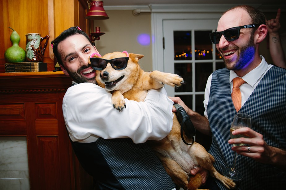 dorset inn gay wedding with dog