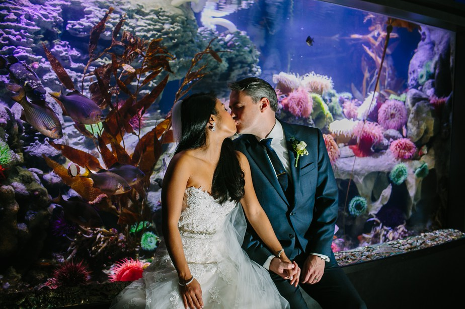anenome fish tank with couple at NEAQ new england aquarium wedding