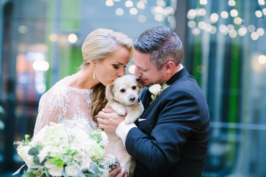 sweet puppy at rooftop ceremony at coppersmith boston restaurant wedding