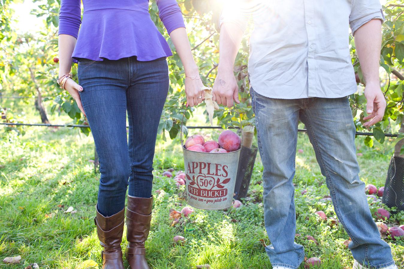 Belkin Family Farm apple picking autumn engagement shoot